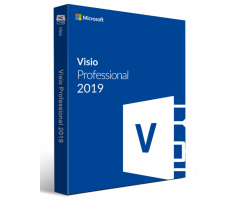 Software Microsoft Visio Professional 2019 32/64 English (D87-07410)